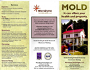 Microzyme Flyers