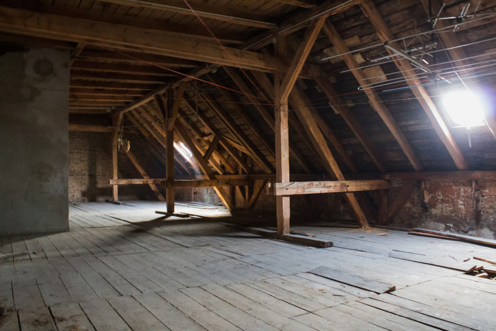 Do You Have Attic Mold? 5 Signs to Look For | Microzyme