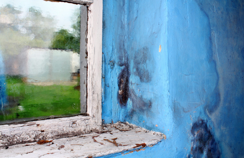 Mold Prevention During the Winter Months | Microzyme