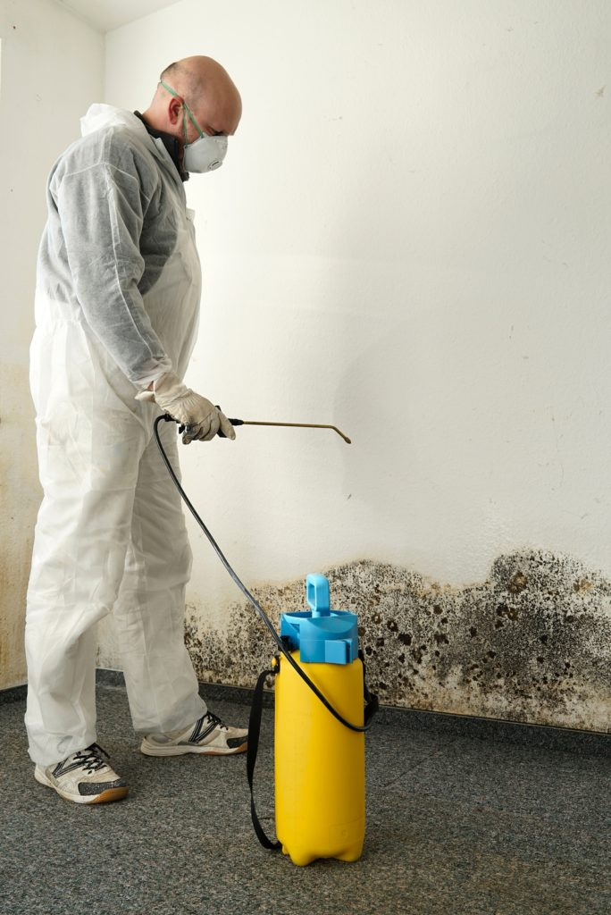 mold exposure can greatly effect your health
